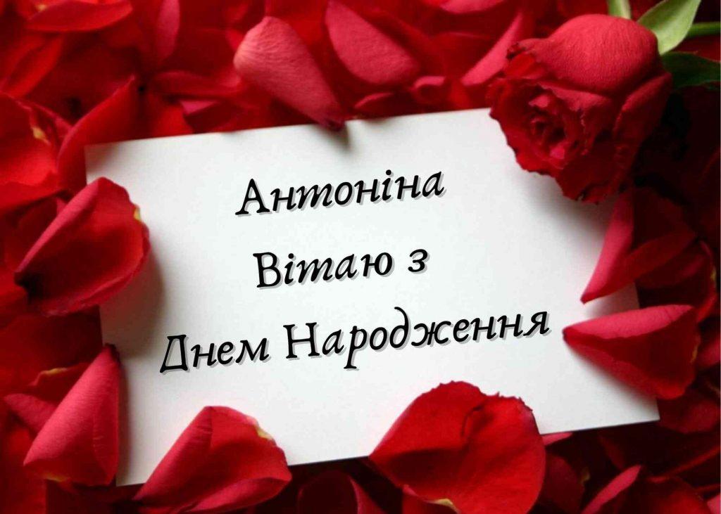 листівка з днем народження антоніни